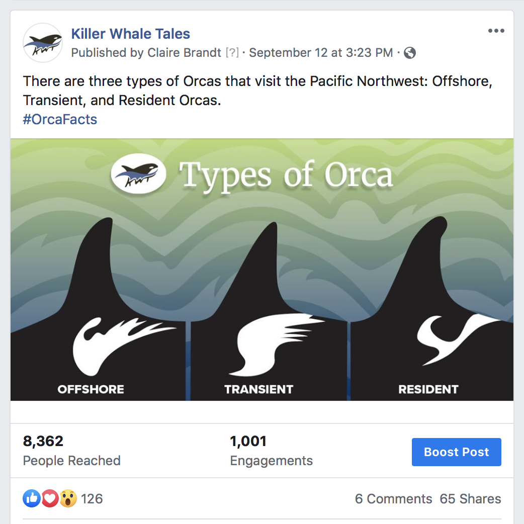 types of orca